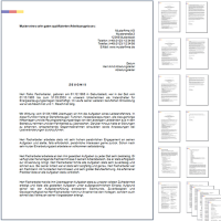 4 x Arbeitszeugnis: Projektingenieur - 16 Seiten